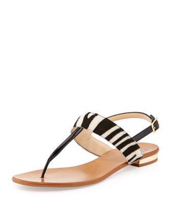 Toni Pony Hair Flat Thong Sandal, Zebra