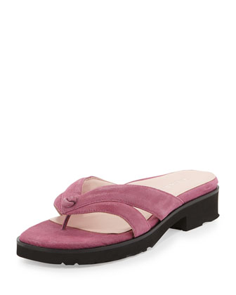 Tacy Suede Thong Sandal, Magenta