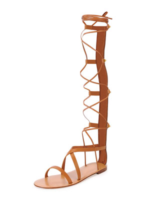 Knee-High Flat Gladiator Sandal