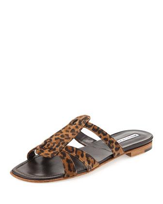 Fregia Leopard-Print Slide Sandal