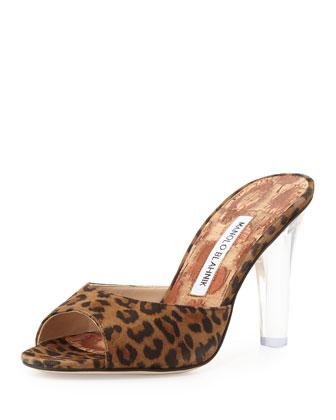 Astuta Suede Clear-Heel Slide Sandal, Leopard