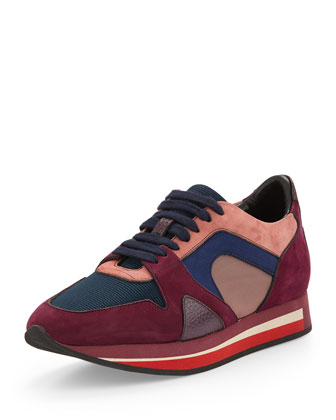 Field Multicolor Leather Sneaker, Gothic Purple