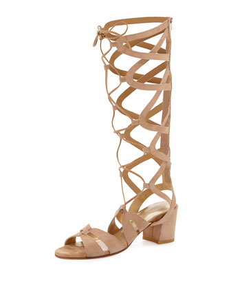Grecian Suede Tall Gladiator Sandal, Cashew