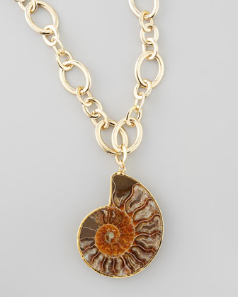Fossilized Shell Pendant Necklace