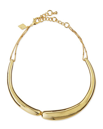 Golden Collar Necklace
