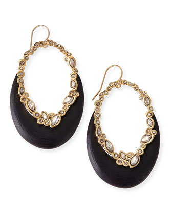 Crystal-Lace Lucite-Crescent Earrings