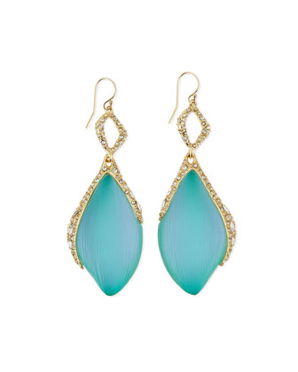 Crystal Encrusted Lucite Dangle Earrings