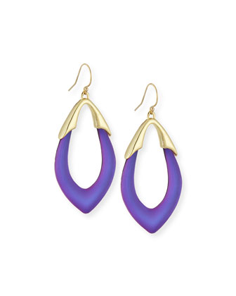 Lucite Orbit Wire Earrings, Magenta