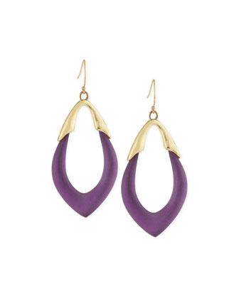 Lucite Orbit Wire Earrings, Iris