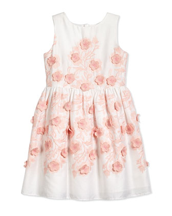 Sleeveless Floral-Embroidered Dress, White/Pink, Sizes 10-14