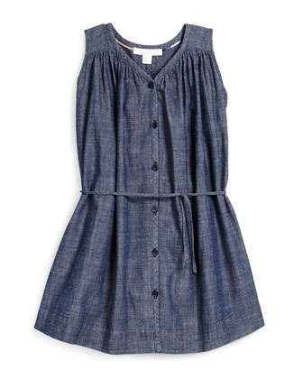 Felica Sleeveless Button-Front Chambray Dress, Light Indigo, Size 4-14
